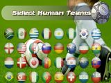 Take a team to the 2010 World Cup Final!