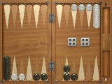 Classic Backgammon in action.
